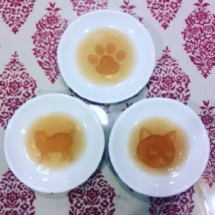 讓貓迷們尖叫?!百圓商店Seria的貓咪商品🐱